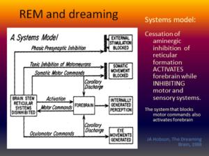 DREAM - flow chart